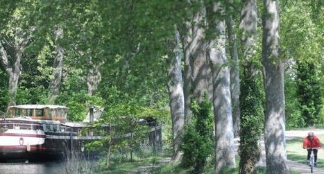 Inscrit au patrimoine mondial,  le canal du Midi dit merci à ses mécènes | Biodiversité & Relations Homme - Nature - Environnement : Un Scoop.it du Muséum de Toulouse | Scoop.it