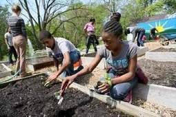 Urban farming invigorates Detroit neighborhood | Progressive Education | Scoop.it