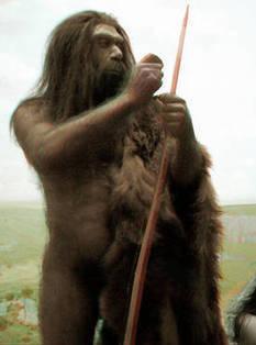 L'Homme de Néandertal a disparu... parce qu'il nous était proche   Aux origines   Scoop.it