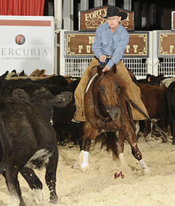 Clone Offspring Entered At NCHA Futurity - Quarter Horse News | Western Lifestyle | Scoop.it