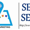 SEO & SEW Web Development