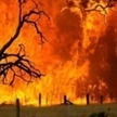 Bushfires | Australia's Physical Environment and Natural Hazards | Scoop.it