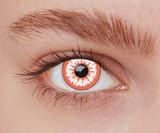 Halloween Contact Lenses | Blue Contact Lenses | Scoop.it
