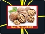 "Nuez (Juglans Regia) - Mind Map | La nuez (Juglans regia). Natural y ""casi perfecta"" | Scoop.it"