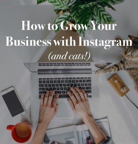 How to Grow Your Business on Instagram Organically | The Social Media Advisor | Scoop.it