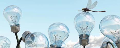 Les grandes entreprises ont du mal à innover - InformatiqueNews.fr | Entrepreneurs du Web | Scoop.it