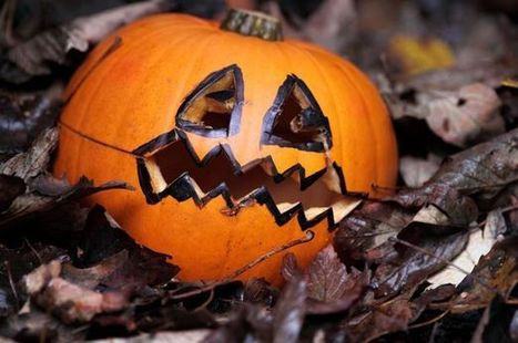 Five spooktastic events for children and families this Halloween - Gazette Live | My Child Learns UK | Scoop.it