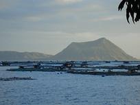 Typhoon Haiyan, Nigeria aquaculture expansion, BC salmon head steps down | Global Aquaculture News & Events | Scoop.it