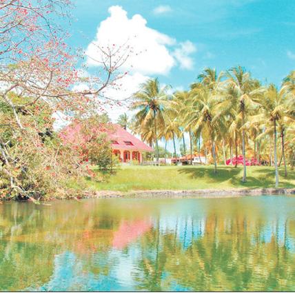 Le rhum Longueteau primé dans un concours mondial - France.Antilles.fr Guadeloupe | Rhum | Scoop.it