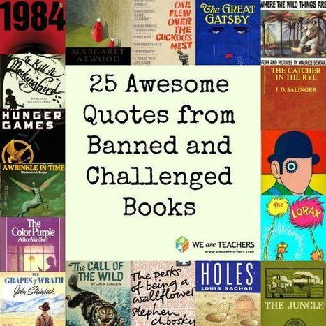to kill a mockingbird + banned book essays