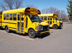 """Google+ is the """"Short Bus"""" of the Social NetworkingWorld 