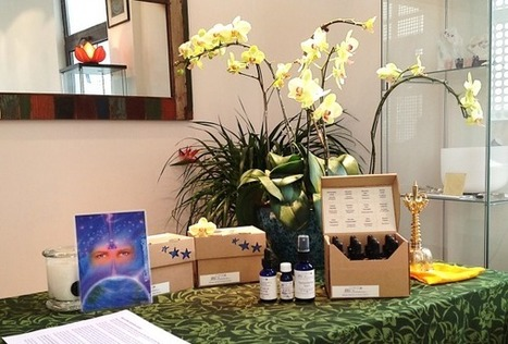 June - STAR Flowers & Gemstones Essences Foundation course | Shanghai Wholehearted Events | Scoop.it