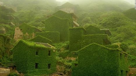 Le critère écologique prend du poids dans l'immobilier   Immobilier   Scoop.it