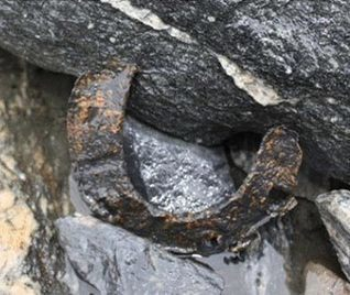 Horse from Middle Ages melts from glacier | Ancient Civilization | Scoop.it