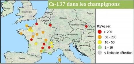 Trente ans après Tchernobyl, des sols européens toujours «contaminés» | Les colocs du jardin | Scoop.it