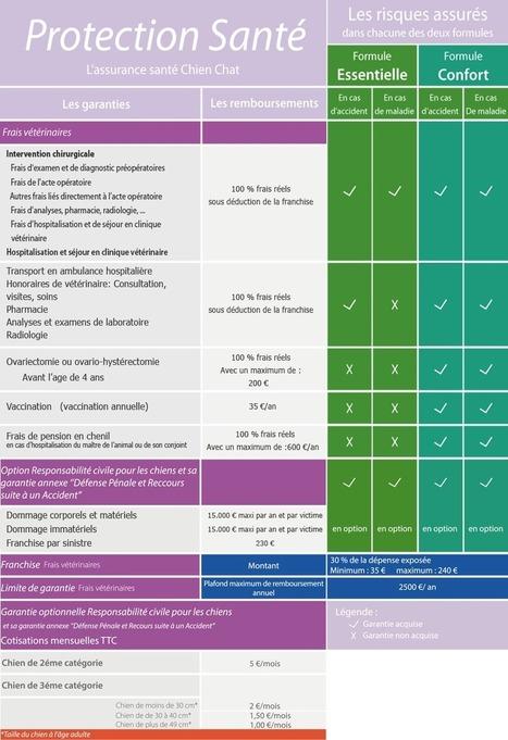 Assurance santé chiens   Protection Santé   Protection Santé   Scoop.it