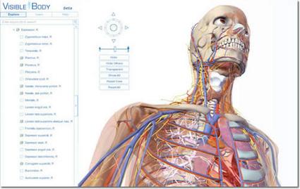 Anatomía humana interactiva | Nuevas tecnologías aplicadas a la educación | Educa con TIC | lenny | Scoop.it