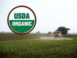 Organic Farming and the Rise of 'Green Pesticides' | @FoodMeditations Time | Scoop.it