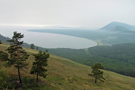 Vast and Pristine, Russia's Lake Baikal Is Invaded by Toxic Algae   Aquatic Viruses   Scoop.it