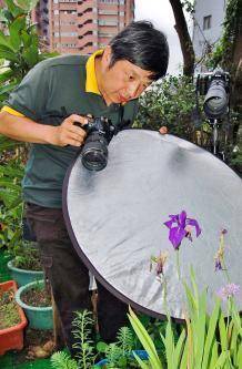 Botanist's photos fail to win back woman's heart - Taipei Times   For the love of Photography   Scoop.it