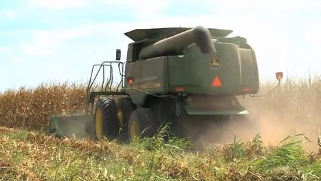Armed to Farm program offers training for military veterans | Military Concerns | Scoop.it