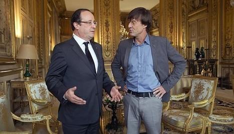 L'OBS - Politique - Nicolas Hulot renonce à la présidentielle 2017 : Hollande l'a tué en 5 coups fatals | CAP21 Le Rassemblement Citoyen | Scoop.it