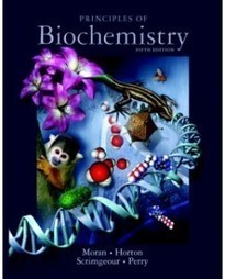 Test Bank For » Test Bank for Principles of Biochemistry, 5th Edition: Laurence A. Moran Download | Chemistry Test Bank | Scoop.it