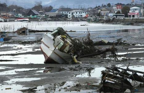 Japon: Les effets de la radioactivité sur la faune et la flore marine | 20Minutes | Japon : séisme, tsunami & conséquences | Scoop.it