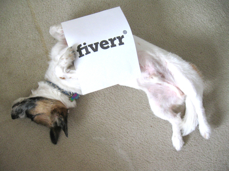 I will have my dog pose with your sign or company logo for $5 | The World | Scoop.it