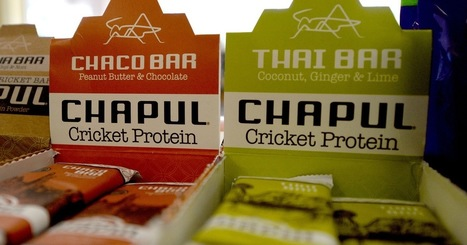 Kale and quinoa are passe, being replaced with crickets by trendy Californians | Entomophagy: Edible Insects and the Future of Food | Scoop.it