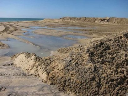 Beach replenishment may have 'far reaching' impacts on ecosystems | Lorraine's Environmental Change &  Management | Scoop.it