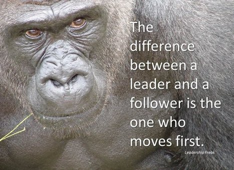 Don't Spank the Gorilla | Leadership Freak | Success Leadership | Scoop.it