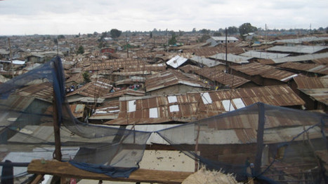 Food security and nutrition in Africa's cities   Devex   Agriculture and Food Security   Scoop.it