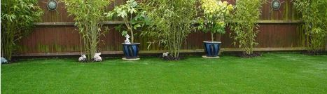 Artificial Grass Landscaping Services   Landscaping and Weed Control   Scoop.it