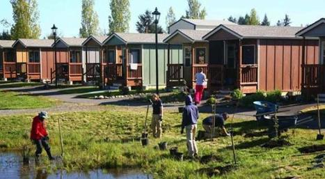 Sonoma County to Build Tiny House Village to House Local Homeless | Permaculture, Horticulture, Homesteading, Bio-Remediation, & Green Tech | Scoop.it