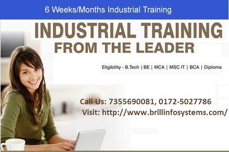 Six Month Industrial Training in Chandigarh | Brill Infosystems | Scoop.it