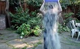 What Can Brands Learn From the #ALSIceBucketChallenge? | MarketingHits | Scoop.it