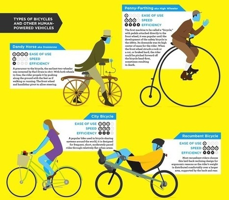 Infographic: A Guide To The Different Types Of Bicycles   Communication design   Scoop.it