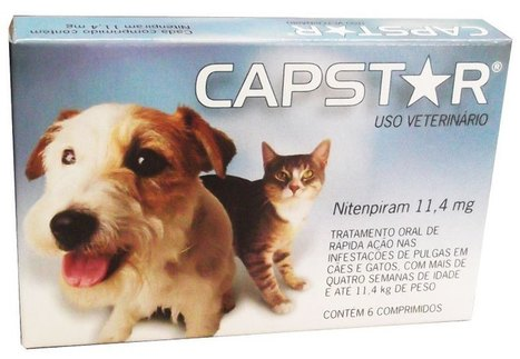 Don't Hesitate To Seek Out Capstar For Cats | Health | Scoop.it
