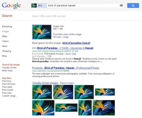 Google Search By Image Gets Smarter & Faster | MarketingHits | Scoop.it