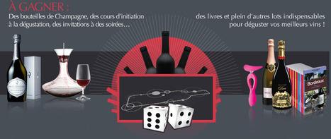 La Route des Vins   Vin, blogs, réseaux sociaux, partage, communauté Vinocamp France   Scoop.it