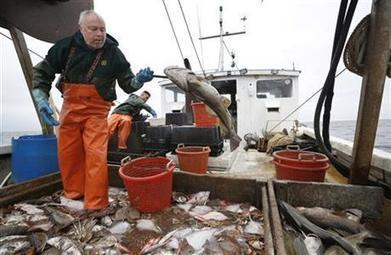 Fading fishermen: A historic industry faces a warming world | Nova Scotia Fishing | Scoop.it