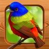 iphone bird games
