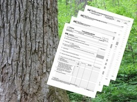 Webinar: Timber Tax Filing for the 2015 Tax Year | Timberland Investment | Scoop.it