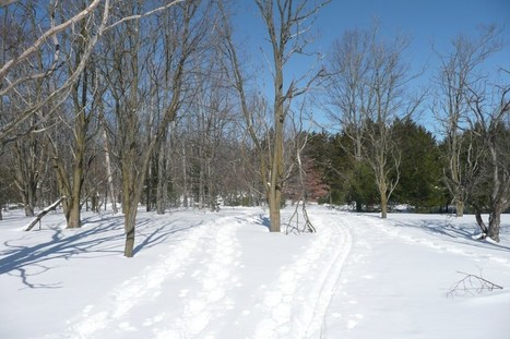 Trail Rights | Northern Michigan Delights | Scoop.it