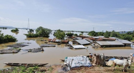 Cameroon, Nigeria cooperate on flood prevention plan   Sustain Our Earth   Scoop.it