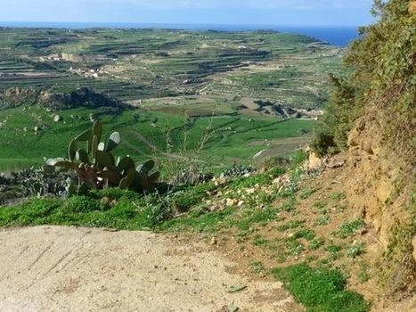 Stumpy's Blog: Gozo | Gozo Life | Scoop.it