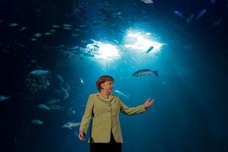 Merkel veut sauver sa révolution énergétique | environnement | Scoop.it