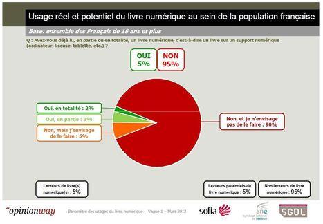 Les usages de la lecture numérique en France - TICE Éducation   TICE & FLE   Scoop.it