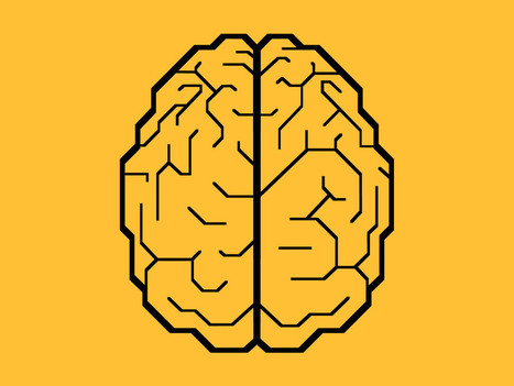 IBM Wants to Implant Fake Brains in Real Brains to Prevent Seizures | Healthcare | Scoop.it